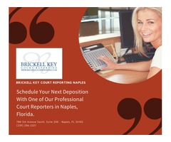 Professional Court Reporter