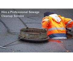 The 5 Steps of Effective Sewage Cleanup