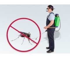 Safe and Effective Mosquito Control