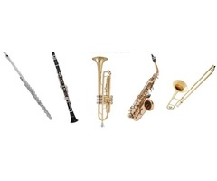 Rent Musical Instrument for school band and orchestra