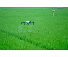 Agriculture Drone Spraying Made Sprinkling Work Easy