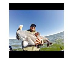 Guided Fishing Lake Texoma