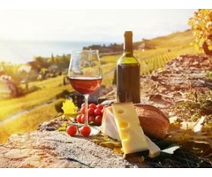 Wine Tours In New York City & New Jersey Leave The Planing To Us  | free-classifieds-usa.com