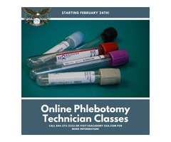 March Madness - Online Phlebotomy Classes