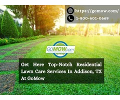Get A Top-Notch Residential Lawn Care Services In Addison, TX At GoMow