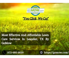 Most Effective And Affordable Lawn Care Services In Leander, TX By GoMow