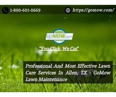 Professional And Most Effective Lawn Care Services In Allen, TX - GoMow Lawn Maintenance
