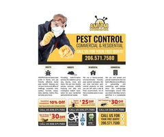 Professional pest control with exterminators