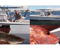 Fishing Charters | Deep Sea Fishing | Offshore Fishing