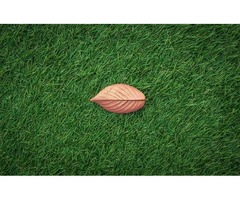 Artificial Grass Installation & Synthetic Green Putting in Jacksonville, Florida