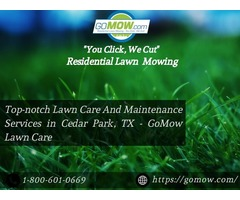 Top-notch Lawn Care And Maintenance Services in Cedar Park, TX - GoMow Lawn Care