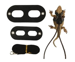 Buy Adjustable Bearded Dragon Harness Rope Set now | PetsCareCampus