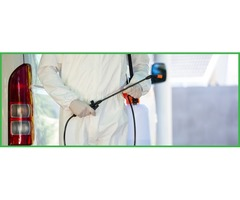Albany Pest Control Services | Commercial Pest Control