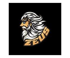 Mascot Logo Design | Mascot Logo | Graphic Design