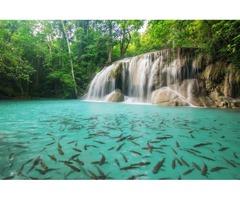 Tour operator Thailandia