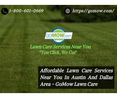 Affordable Lawn Care Services Near You In Austin And Dallas Area - GoMow Lawn Care