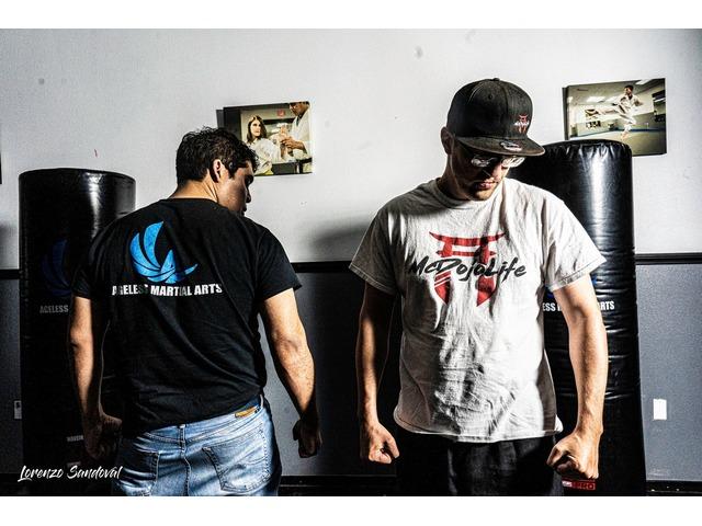 Ageless Martial Arts and Martial Arts Classes Near me | free-classifieds-usa.com