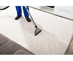 Looking For Professional Carpet Cleaning Services In Woodbridge VA?
