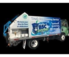 Trash bin cleaning system
