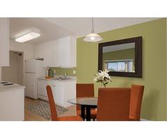 House For Rent   free-classifieds-usa.com