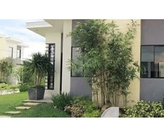 HOUSE AND LOT FOR SALE BACOLOD Manila