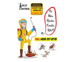 Spotless quarantine environment! | Get rid of roaches, termites, and rats while you are home!