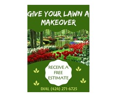Personalized yards and gardens!   Give your house a post-lock-down makeover!   Gardening & Lands
