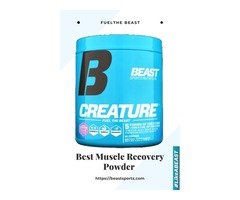 Best Muscle Recovery Powder