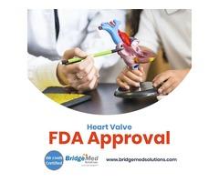 Heart Valve FDA Approval -  Bridgemed Solutions, Inc.