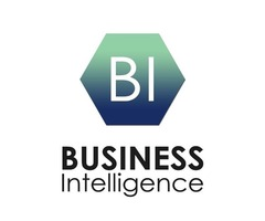 Business Intelligence Consultant - Business Intelligence Software - Business Consulting Services