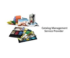 Catalog Management Services Provider 2020