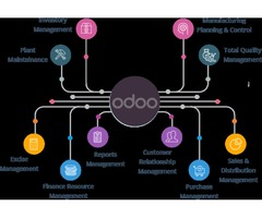 Hire Best Odoo Experts in USA | Odoo Express