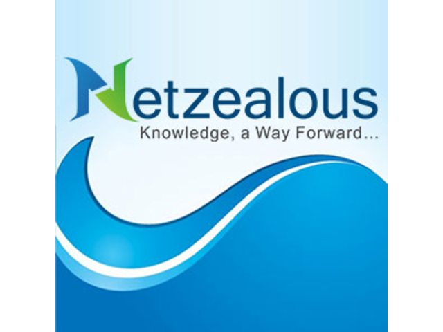 Well Training Available for all Industries from Netzealous LLC