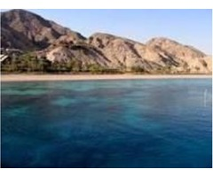 Visit red sea jewels