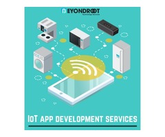 Comprehensive IoT app development services by Beyond Root