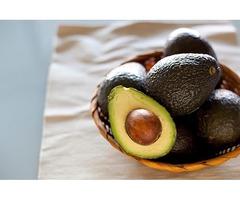Heirloom Organic Seed Avocado : Avocadomonthly.com