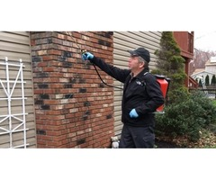 Full Service Pest Control For your Home & Business