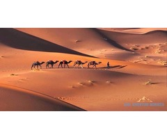 Experience Colours of Marrakech Travel Company Hospitality by Soul Adventure Morocco: