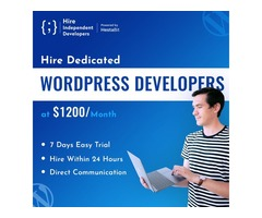 Hire WordPress Developers & Programmers | Hire Within 24 Hours