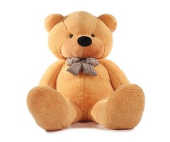 High quality Low price Plush toys large size80cm / teddy bear 80cm/big embrace bear doll /lovers/chr
