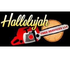 Hallelujah Tree Service LLC