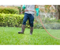Tick Spray for Yard