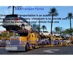 Auto Transport Services in Fort Lauderdale | Onassis