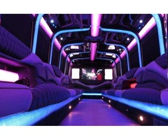 Wedding Party Bus Chicago