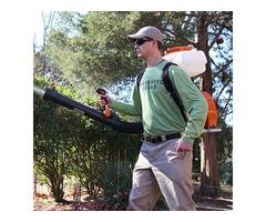 mosquito tick control service