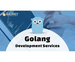 Golang Development Services   Save Up to 40% on Development Cost