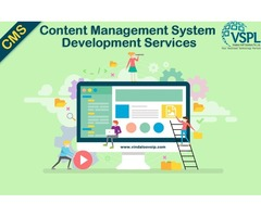 Content Management System Development Services by VSPL