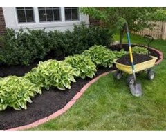 Trust The Family Owned And Operated Source For Great Sod | free-classifieds-usa.com