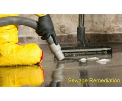 Sewage Remediation Suggestions for Effective Cleaning