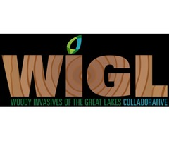 Woody Invasives of the Great Lakes Collaborative | WIGL